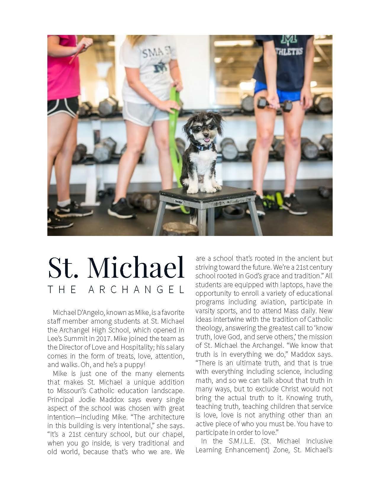 St. Michael Online